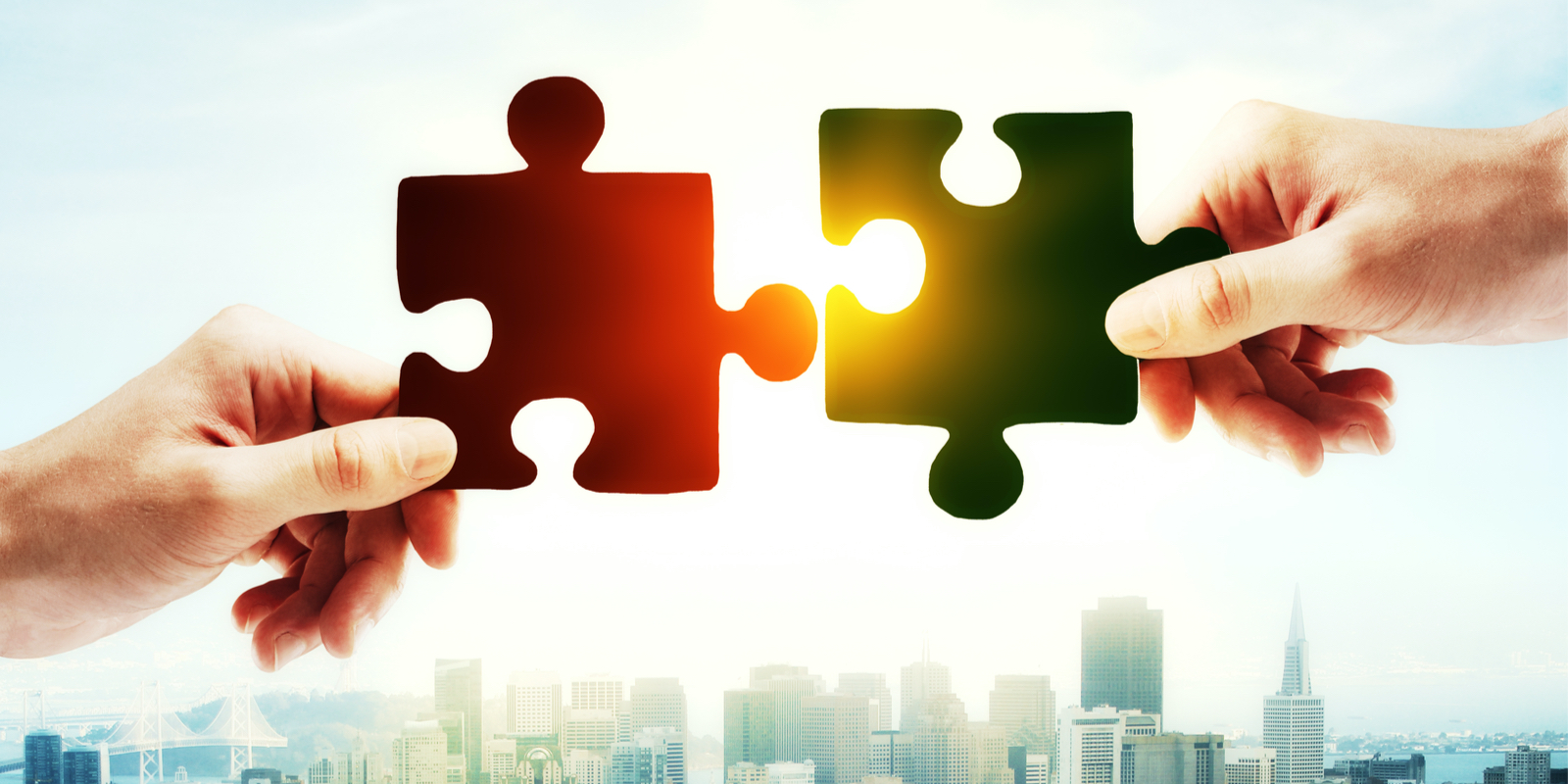 Value of Partnership for Agencies